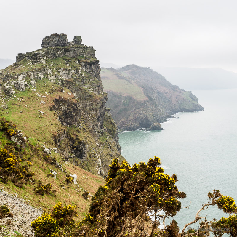 Castle Rock #1