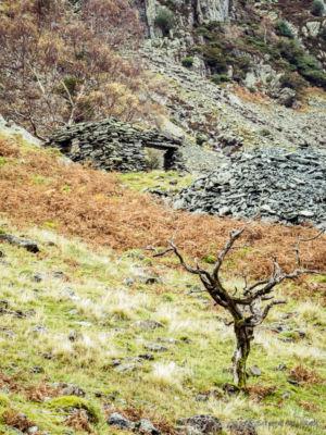 Castle Crag #1