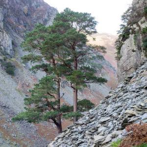Castle Crag #3