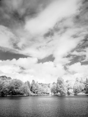 Stourhead IR #8 (720nm)